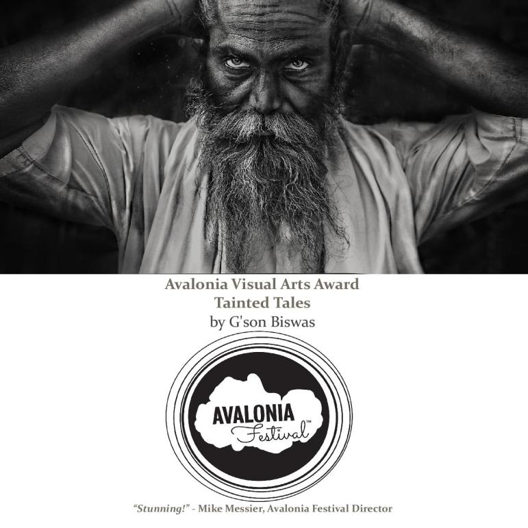 Avalonia Festival – Avalonia Festival